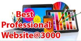 Professional Website @ 3000